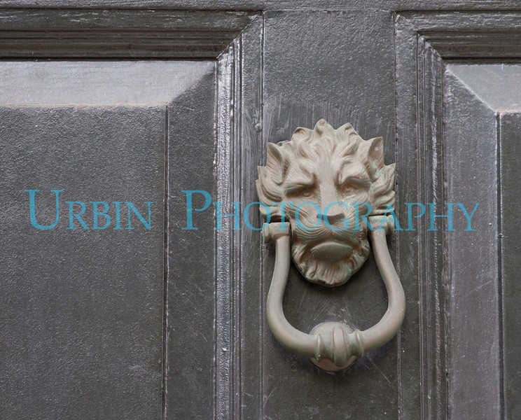 I like the raised eyebrow on this lion headed door knocker.