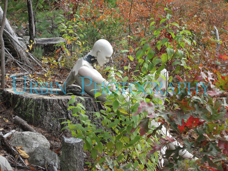 Mannequin on a stump.  I found this while on a shoot.  Serendipity is a wonderful thing.