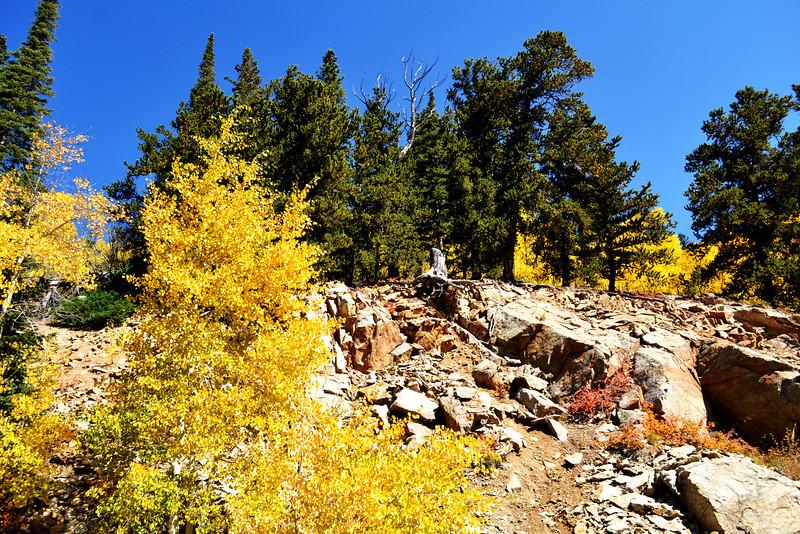 Fall in Colorado 10
