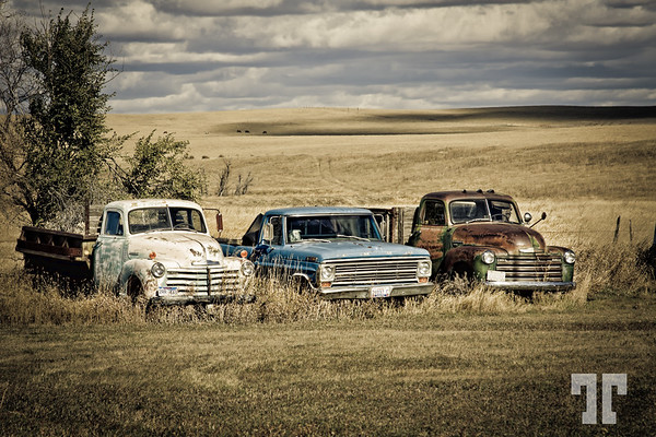 Classic trucks in Quinn Town - Pennington County, South Dakota  (ZZ)