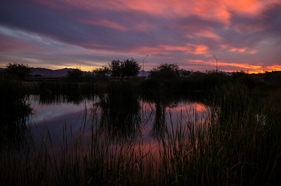 354 - South Phoenix Wetlands @ Sunset