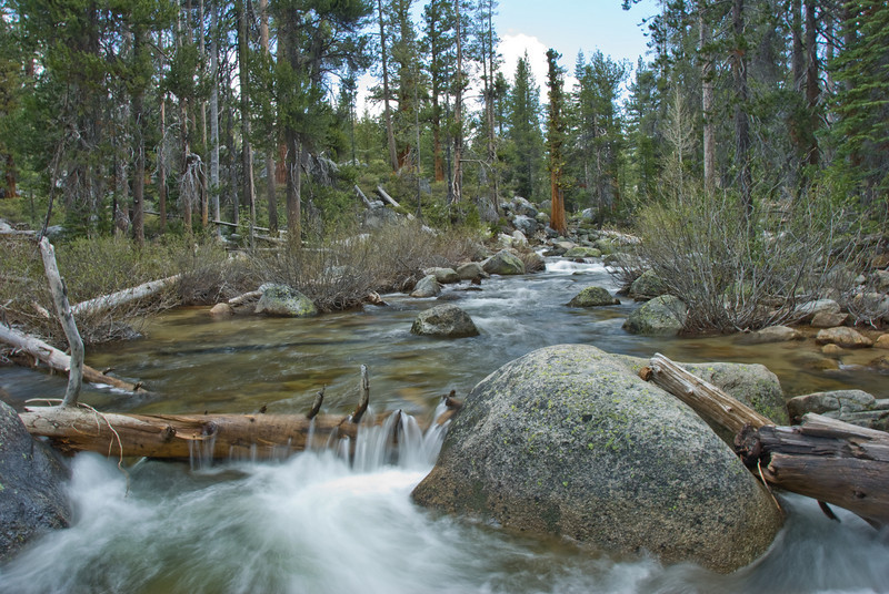 Yosemite Creek, California.