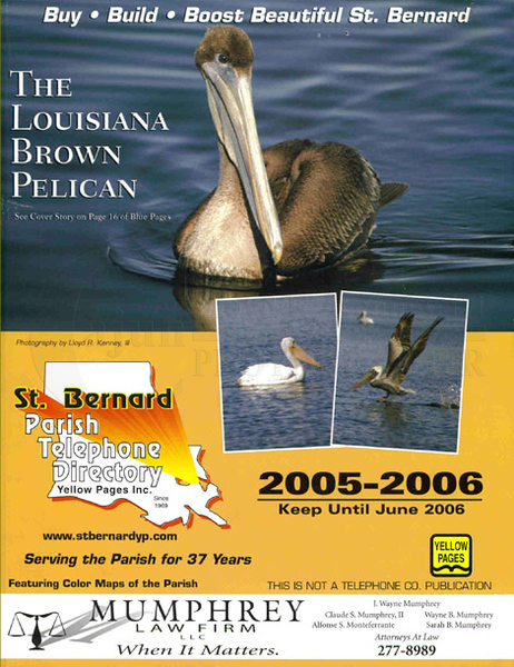 This is my First Published Photo - The Louisiana Brown Pelican. The photo was taken in Chalmette Louisiana on Sunday, ‎December ‎26, ‎2004, ‏‎3:52:48 PM. While driving around the Gulf Outlet Marina off Paris Road. This along with my First First Place Photo was and still is my passion. What will I photograph next???? Photography By Lloyd R. Kenney III (C) 2012 All Rights Reserved.