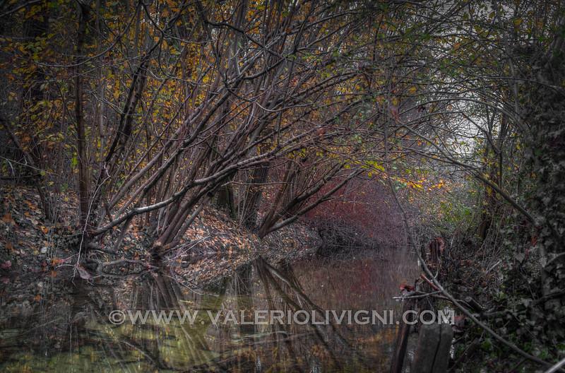 Waterway at Taraplino - Parco del Ticino, Vigevano
