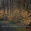 Road to the Butterflies Trail - Parco del Ticino, Molino del Conte