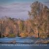 The Ticino river from Ronchi estate riverside - Parco del Ticino, Vigevano