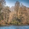 Ayala oxbow lake - Parco del Ticino, Vigevano