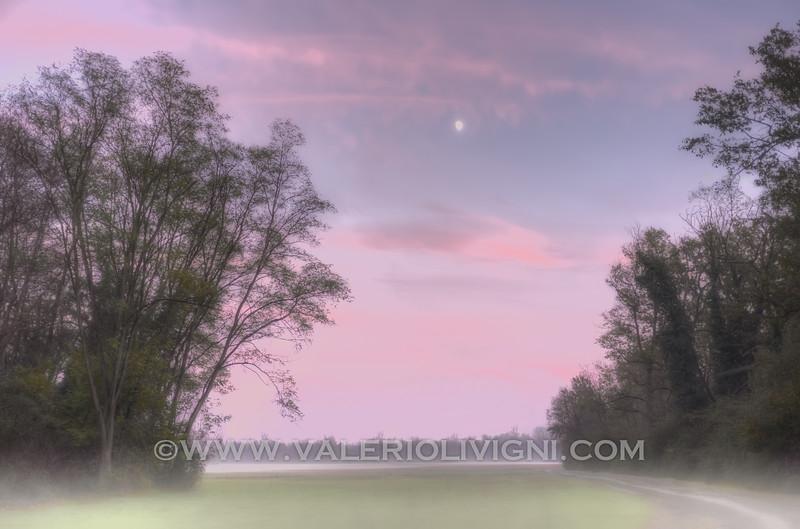 Moonlight at Ronchi estate - Parco del Ticino, Vigevano