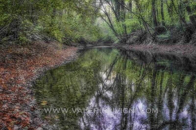Natural pond at Ronchi estate - Parco del Ticino, Vigevano