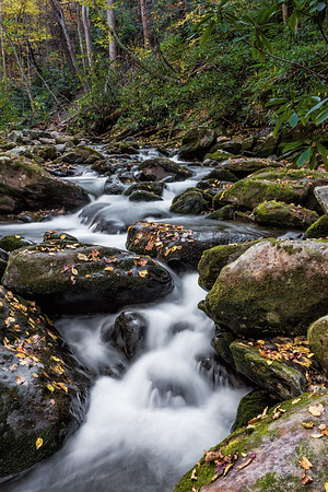 Roaring Fork Motor Trail - Great Smoky Mountains National Park