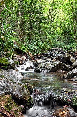 Alum Creek Trail - Great Smoky Mountains National Park