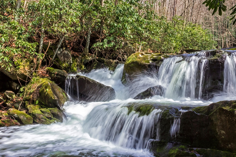 Lynn Camp Prong Falls - Great Smoky Mountains National Park