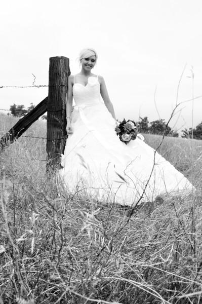 Mollman - Campbell Wedding