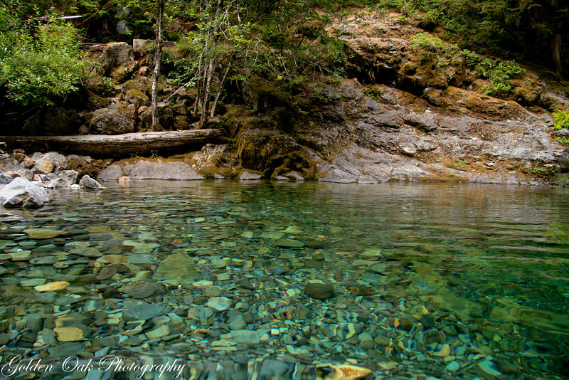 Falling into Opal Creek on the N Santiam gave me a great perspective from the water..don't you think?