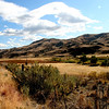 """Way out west""<br /> A view of the canyons near John Day..Just love the sparseness and the rolling terrain..How the west used to be and still is in some parts of the country..<br /> happy friday..."