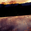 Sunset reflection in the vineyards of Napa..What a glorious sunset!<br /> Taken at Silver Oak Vineyards.