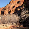 Hiking in Sedona along the river near the base of Cathedral rocks the moon began to rise..