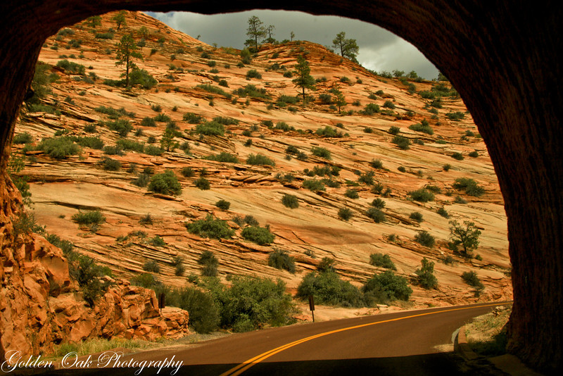 Coming out through the tunnel at Zion National Park the yellow reds of the cliffs hit you..