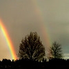 Yes it's still raining up here in rainy Oregon..but the sun came out just at sundown and the twin rainbows were really viviid. This was taken with my iphone so sorry for the quality..but my standard was at home.<br /> Thanks for all the lovely comments! You guys are awesome...