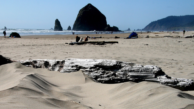 Haystack Rock view with an old weathered log catching the sand. I like the patterns the wind has made.