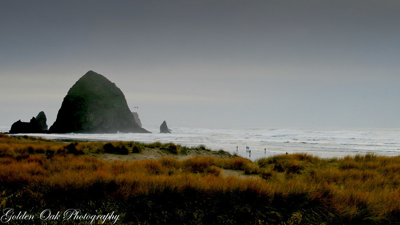 Haystack Rock at Cannon Beach on a cool cloudy morning..