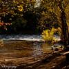 This beautiful fall spot in Riverside park, near Detroit Lake Oregon glows with the seasonal colors.
