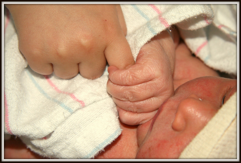 Just hours old, Colton Chester holds onto his big brother Myles finger in hospital.