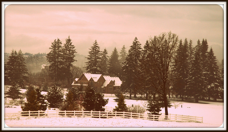 Snowy day in spring..looks just like a Christmas card
