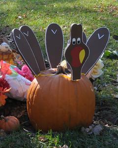 11/22/12  Vegetarian Turkey Day - Happy Thanksgiving!