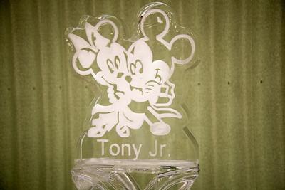TonyJr-8