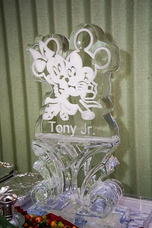 TonyJr-6