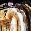 Buying a fur coat in Torino