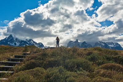 TDP 042.  Torres del Paine, Towers in background.