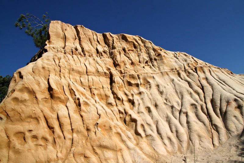 Torrey Pines 9