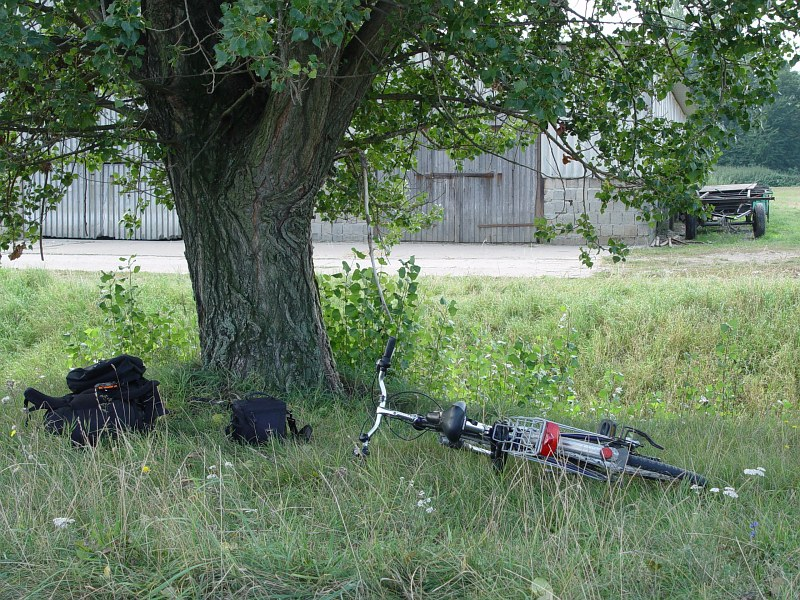 2005-09-10_06204 Rastplatz im Grünen Resting place under a tree on a meadow