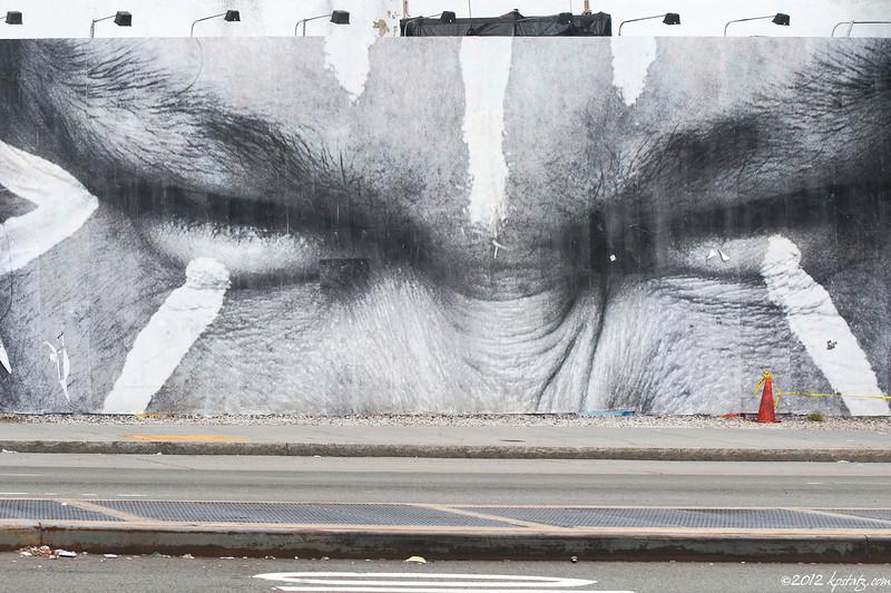 Eyed, NYC