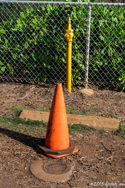 """Three of my favorite """"special"""" subjects - hydrant, traffic cone and manhole cover; Kauai"""