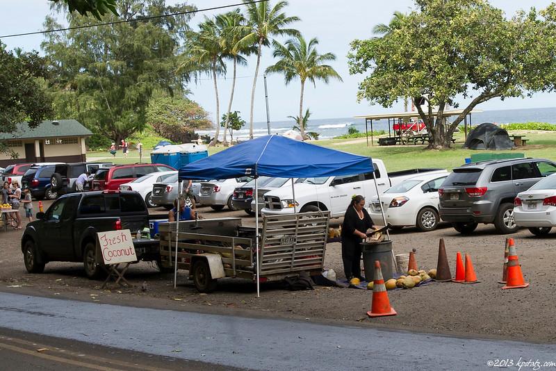 Guarding coconuts, Kauai