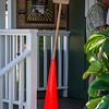 Painter's cone, Kauai