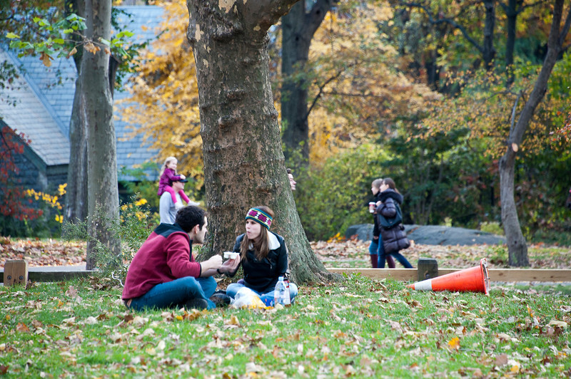 Having a Picnic in Central Park, NYC
