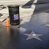 Starstruck, Hollywood