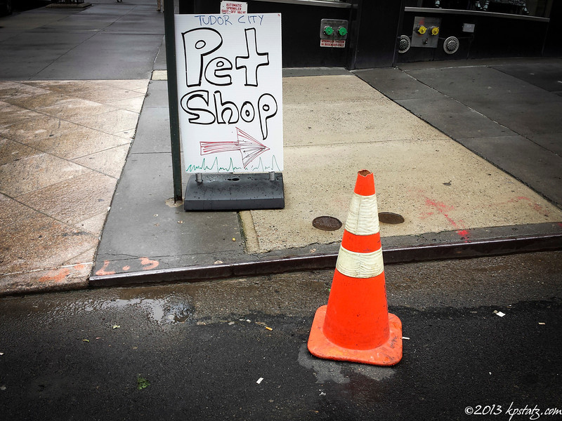Pet, NYC