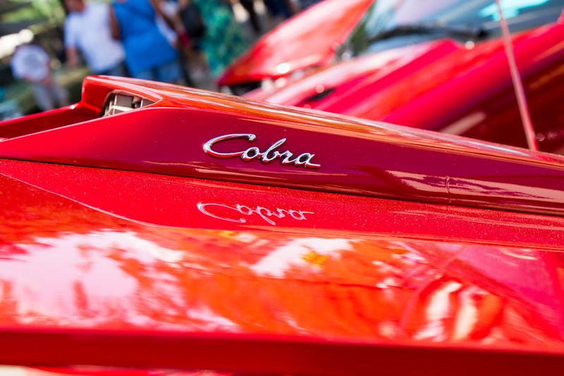 Mustang Cobra Spoiler