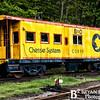 Cass Scenic Railroad 60 0514
