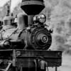 Cass Scenic Railroad 59 0514