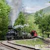 Cass Scenic Railroad 127 0514