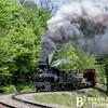 Cass Scenic Railroad 124 0514