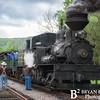 Cass Scenic Railroad 61x 0514