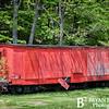 Cass Scenic Railroad 122 0514