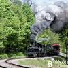 Cass Scenic Railroad 125 0514